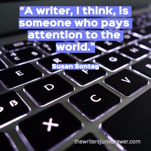 Sontag quote